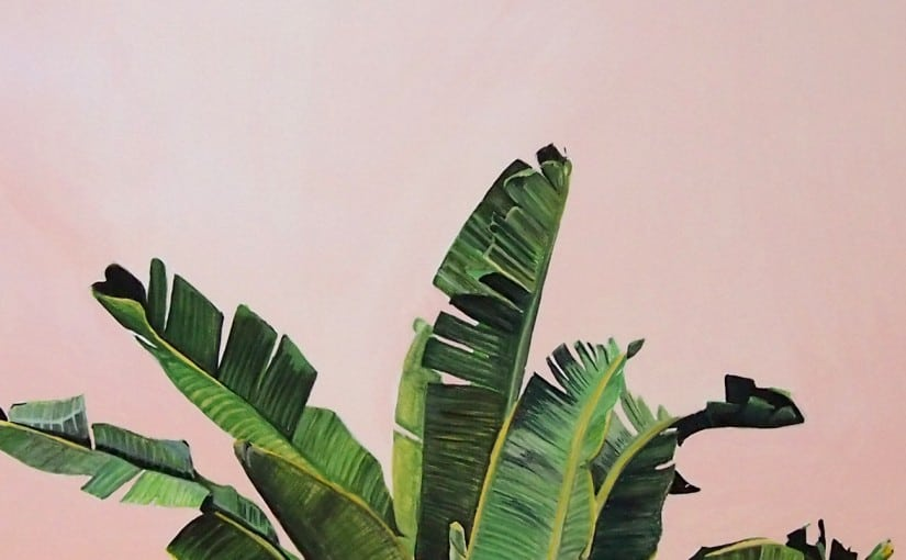 Palm leaves on pink