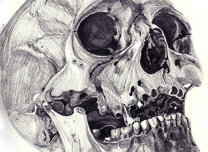 Skull monochrome sketch